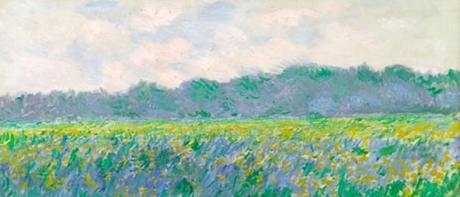 Field of Yellow Irises near Giverny - Claude Monet