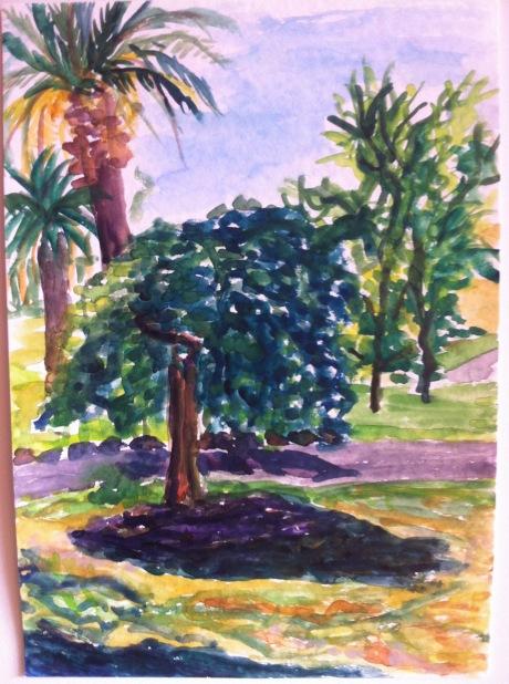 Yarraville park